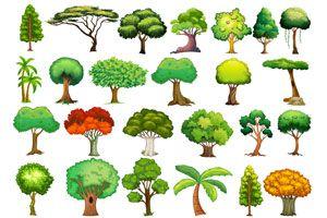 Ilustración de Como elegir árboles según sus colores
