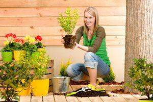 Beneficios de la Jardinería