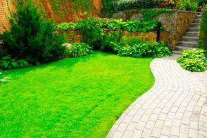 Guía para definir la parquización de nuestro jardín. Paso a paso, cómo diseñar un proyecto de parquización para el jardín.