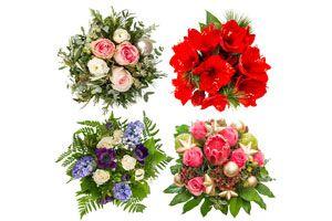 Decoración con plantas y flores en navidad.