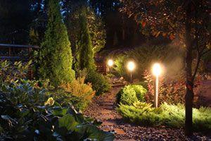 Ilustración de Cómo diseñar la iluminación del jardín