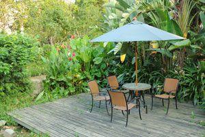 Cómo eliminar el moho en el jardín