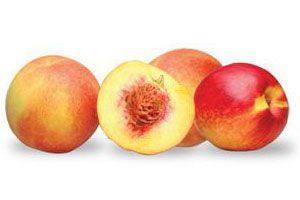 Cómo Deshidratar Frutas con Carozo