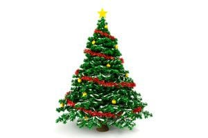 Cómo Elegir el Mejor Pino de Navidad