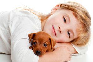 C mo saber si puedo tener un perro de mascota - Perros para tener en casa ...