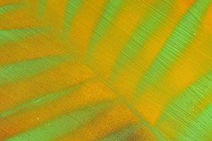 Cómo hacer Pintura que Cambia de Color según el Clima