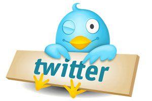 Cómo Aprender a Usar Twitter