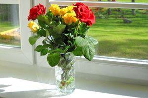 Mantenimiento de los floreros