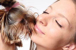 Cómo disfrutar del perro
