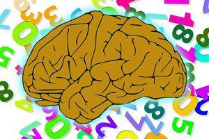Ilustración de ¿Qué es el coeficiente intelectual?