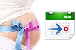 Cómo saber si es niño o niña según el calendario