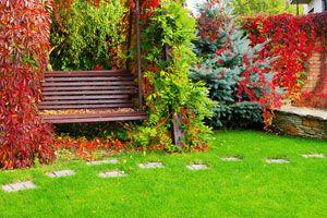 Cómo mejorar el jardín durante el otoño