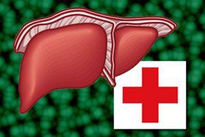 Cómo desintoxicar el hígado
