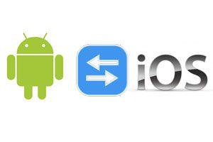 Cómo exportar contactos entre IOS y Android