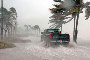 Ilustración de Cómo protegerse cuando hay vientos fuertes