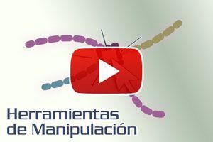 Cómo usar las herramientas de manipulación en Corel - Video