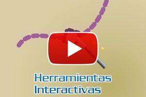Ilustración de Cómo usar las herramientas interactivas en Corel - Video