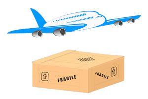 Ilustración de Cómo llevar objetos frágiles en un avión