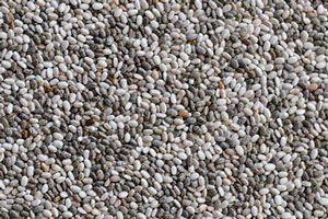 Propiedades de las semillas de chía
