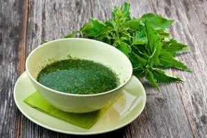 Beneficios y propiedades de la ortiga. Beneficios de las plantas de ortiga para la salud y belleza. Propiedades de las hojas de ortiga
