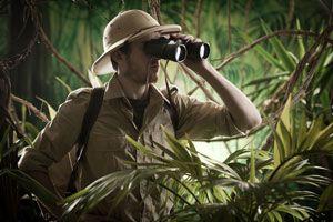 Ilustración de Consejos para Viajar a la Selva