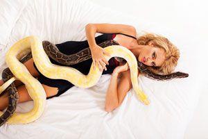 ¿Qué Significa Soñar con Serpientes?