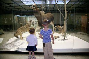 Cómo organizar una visita al museo con niños. Consejos para ir al museo con tus hijos. Claves para ir al museo con tus hijos