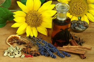 Cómo elaborar extractos caseros. cómo hacer extractos caseros de hierbas y frutas. Extractos de frutas y especias