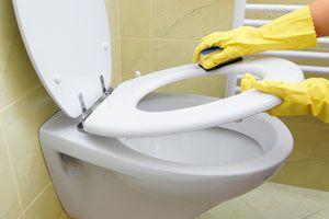 Pasos para limpiar el sanitario. Cómo limpiar el cuarto de baño. Limpieza y mantenimiento del sanitario. Guía para limpiar el sanitario