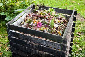Desechos que NO debes Usar al hacer Compost