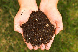 Cómo hacer composta casera con desechos para una huerta orgánica