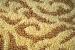 Cómo proteger las alfombras de las polillas
