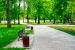 Cómo disfrutar a fondo la naturaleza en los parques