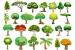 Cómo Elegir árboles según sus Colores