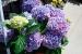 Cómo renovar el hogar con la llegada de la primavera