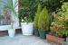 Cómo mantener un jardín de macetas en buenas condiciones