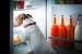 Perros en la cocina: precauciones a tomar